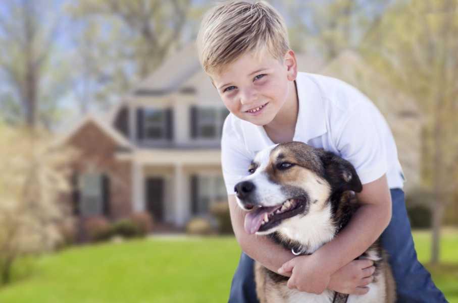 Çocuklara hayvan sevdirme