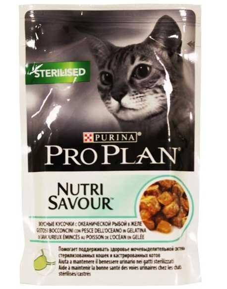 Pro Plan Kedi Maması