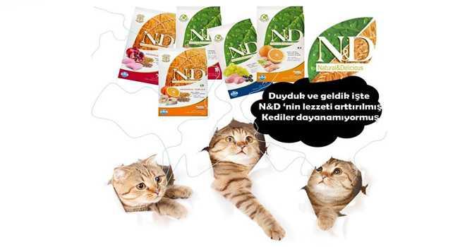 N&D kedi maması