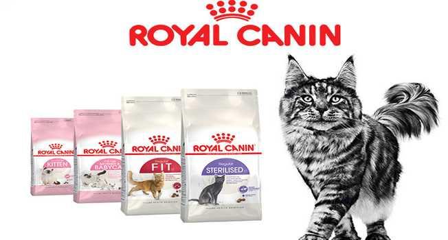 Royal Canin Kedi Maması