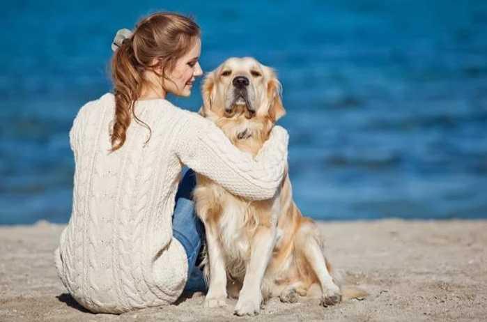 Köpeğinize zaman ayırın