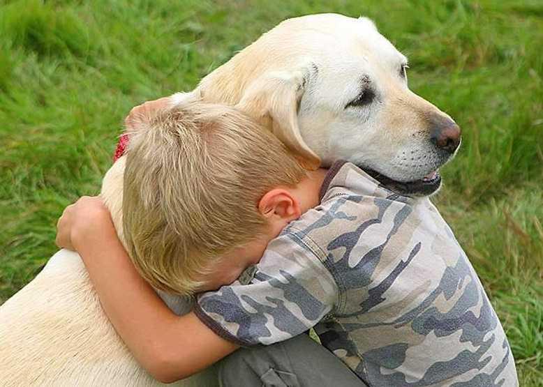 Hayvanları neden severiz