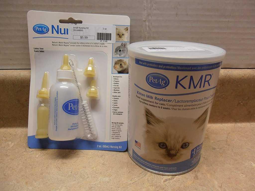 kediler için süt tozu