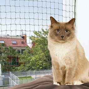 kedi koruma ağı