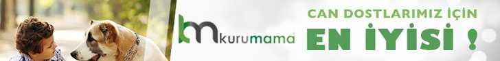 kurumama.com