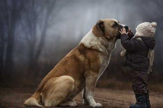 Hayvanlara karşı ön yargılı olanlara birkaç nasihat