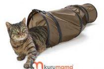 Kedinizin Neden Kedi Tüneline İhtiyacı Var? — Nasıl Kullanılır?
