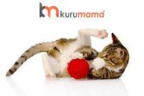 Kedilerin Zeka Gelişimini Destekleyen En İyi 5 Kedi Oyuncağı