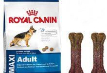 Royal Canin mamaları